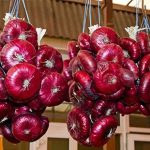 Как правильно хранить лук вквартире: украшаем кухню «косами» или прячем вкладовку вчулках