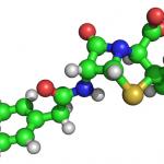 Зачем нужны аминокислоты?