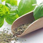 Какими свойствами обладает базилик?