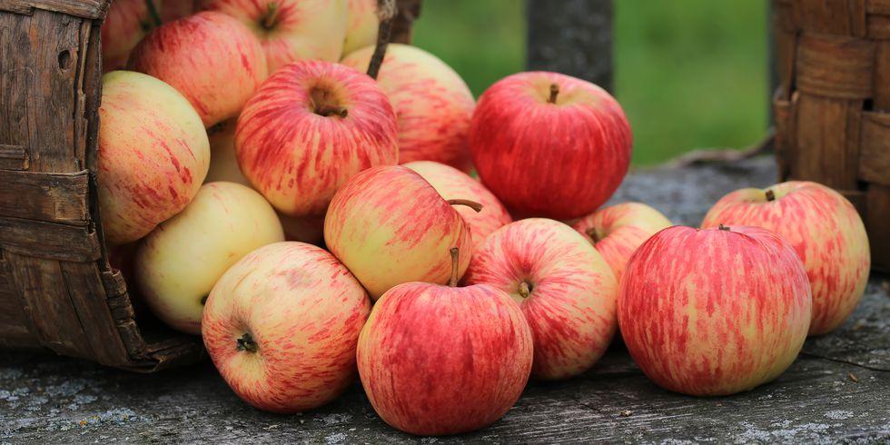 Почему яблоки являются одним из лучших фруктов, которые вы можете съесть?